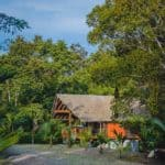 boutique villa in the jungle