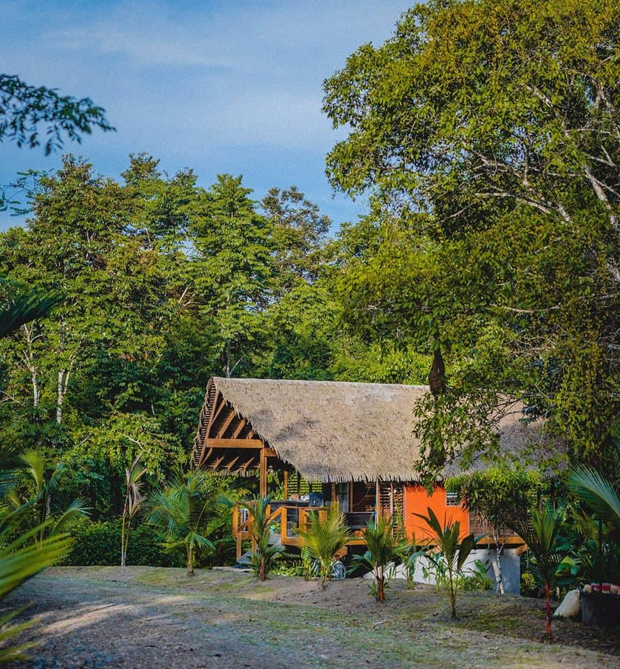 Boutique Villa in the Jungle