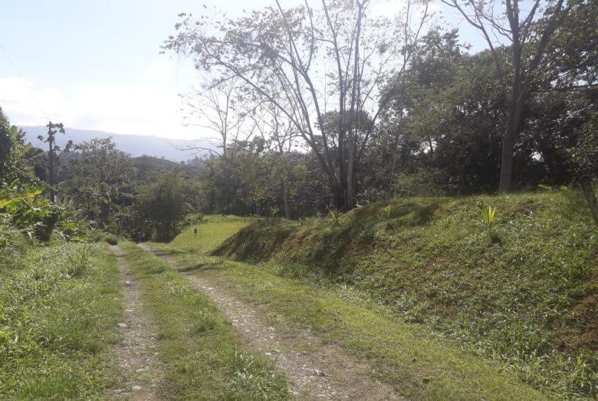 lot-selva-encantada