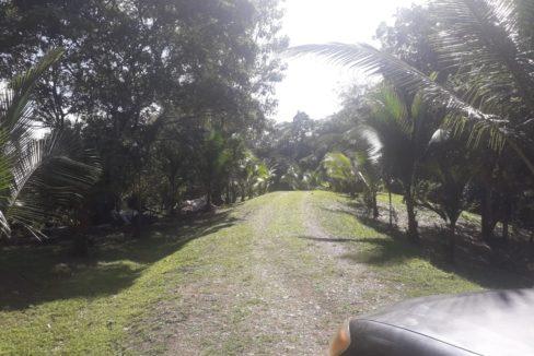 selva-encantada-lots